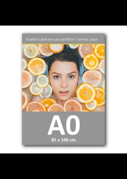 Plakat med print / tryk i A0 85x120cm.-20